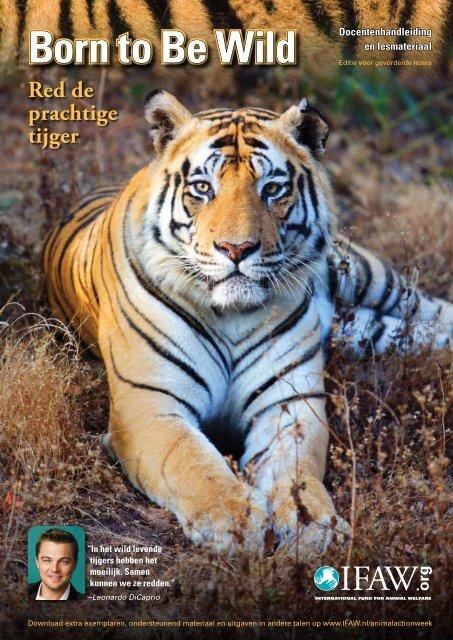 11-14 jaar - International Fund for Animal Welfare