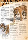 11-14 jaar - International Fund for Animal Welfare - Page 3