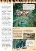 11-14 jaar - International Fund for Animal Welfare - Page 5