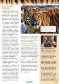 11-14 jaar - International Fund for Animal Welfare - Page 7