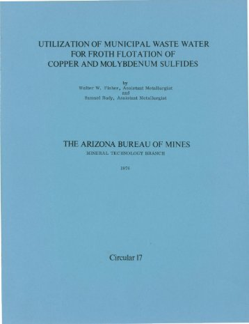 Utilization of Municipal Waste Water for Froth Flotation of Copper ...