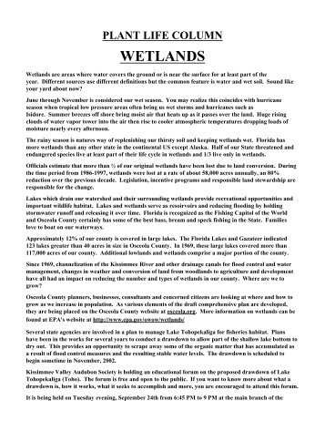 Wetlands - Osceola County Extension - University of Florida