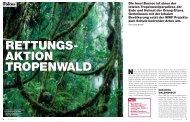 Die Insel Borneo ist eines der letzten tropenwald ... - WWF Schweiz