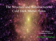 The Aquarius Project: Dark Matter under a Numerical Microscope