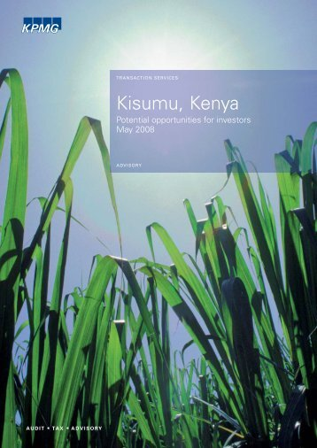 Kisumu: Potential Opportunities for Investors - Millennium Cities ...