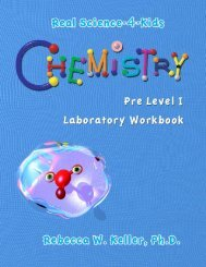Download a Pre-Level 1 Chemistry Workbook PDF - Rainbow ...