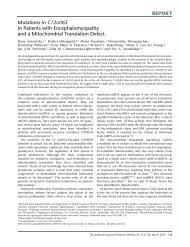 Mutations in C12orf65 in Patients with Encephalomyopathy and a ...