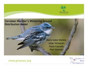 Modeling the wintering range of the Cerulean Warbler