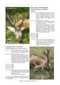 MISTRAL JAGDREISEN Ges.m.b.H. A 3730 Eggenburg, Wiener ... - Page 6