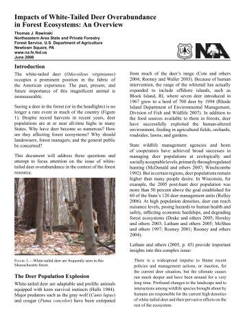 Impacts of White-Tailed Deer Overabundance in Forest Ecosystems ...