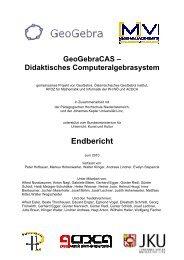 Rechenschaftsbericht 2010 - Regionales Fachdidaktikzentrum ...
