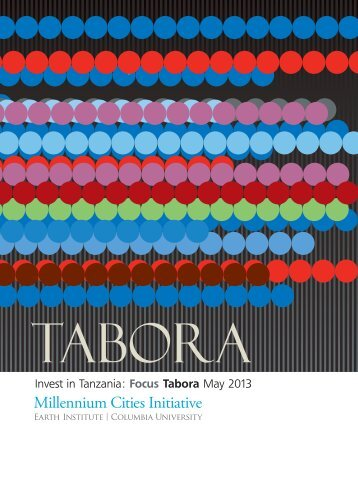 Invest in Tanzania - Millennium Cities Initiative - Columbia University