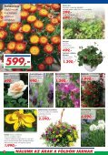 999 - Auchan - Page 2
