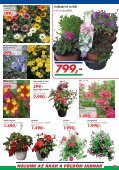 999 - Auchan - Page 3