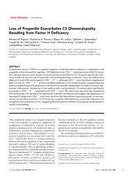 Loss of Properdin Exacerbates C3 Glomerulopathy Resulting from ...