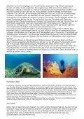 Marsa Shagra 2013 - Aquakadabra - Page 6