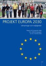PROJEKT EUROPA 2030