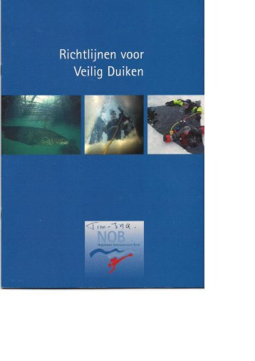 Richtlijnen voor veilig duiken