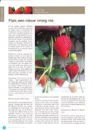 Flair, een nieuw vroeg ras - Fragaria Holland