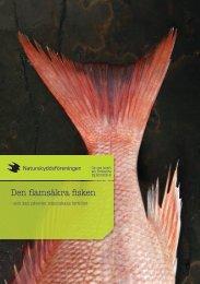 Den flamsäkra fisken - Sveriges Radio