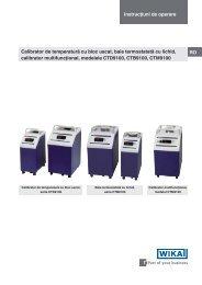 Instrucţiuni de operare RO Calibrator de temperatură cu bloc uscat ...