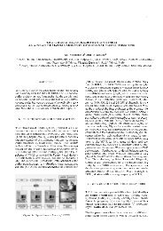 THE TRIESTE SOLAR RADIO SYSTEM - ESA Space Weather Web ...