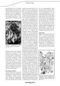 Efeu - Astral - Seite 2