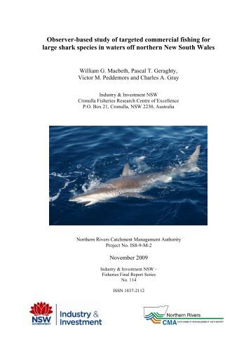 Observer-based study of targeted commercial fishing for large shark ...
