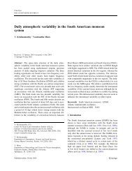 Daily atmospheric variability in the South American monsoon system