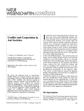Conflict and cooperation in ant societies