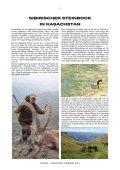 SIBIRISCHER STEINBOCK - Page 2