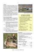 SIBIRISCHER STEINBOCK - Page 7