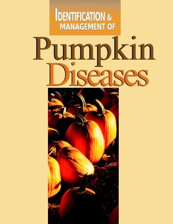 Pumpkin Diseases - Purdue Extension - Purdue University