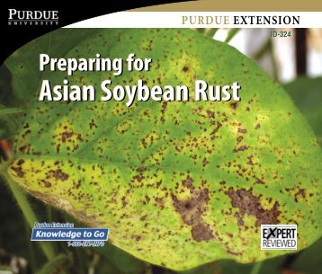 Preparing for Asian Soybean Rust, ID-324 - Purdue Extension ...