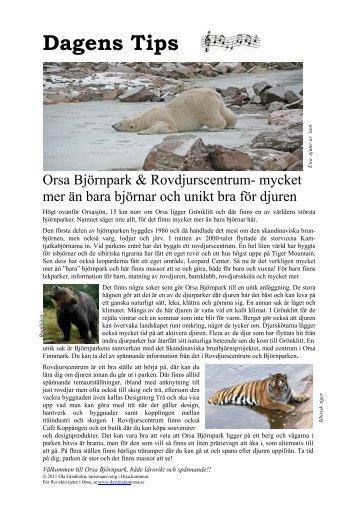 Björnparken - Destination Orsa