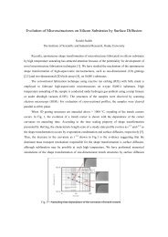 Evolution of Microsctructures on Silicon Substrates by Surface ...