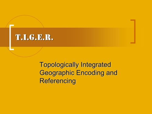T.I.G.E.R. - Employment