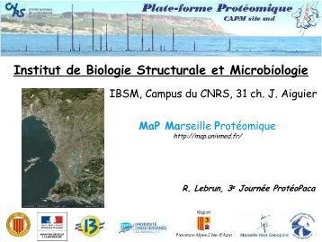 Institut de Biologie Structurale et Microbiologie