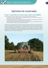 Agricultura de conservação - agrilife - Europa