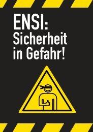 Das «Sündenregister» des ENSI (PDF) - Allianz «Nein zu neuen AKW