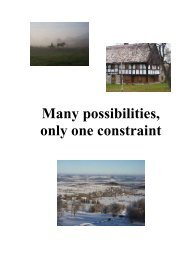 Many possibilities, only one constraint Potentials and ... - Nemo