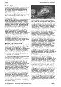 Vrije Wandelaar najaar 2010 (Walkabout) - Nemo - Page 4