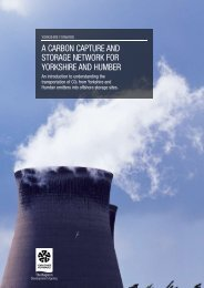 A cArbon cApture And storAge network for yorkshire And humber