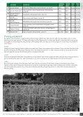 Clematis - Hortus Loci - Page 5