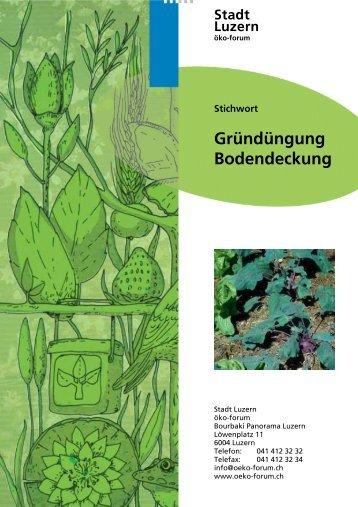 Gründüngung Bodendeckung - öko-forum Umweltberatung Luzern