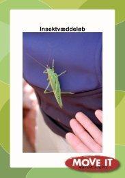 Insektvæddeløb