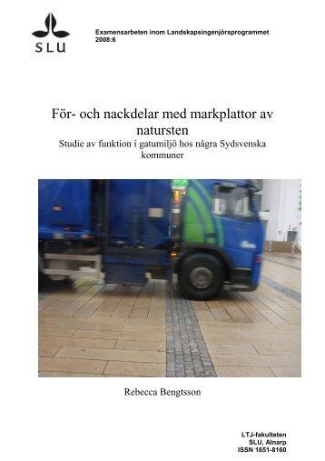 För- och nackdelar med markplattor av natursten - SLU