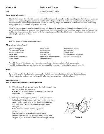 Bacteria and viruses webquest