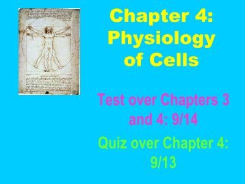 Chapter 4: Physiology of Cells