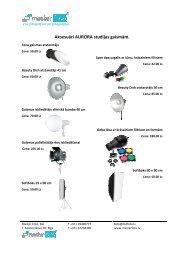 Blitzröhre Für Hensel Studioblitze 1000Ws HENSEL Expert D 500//D 1000